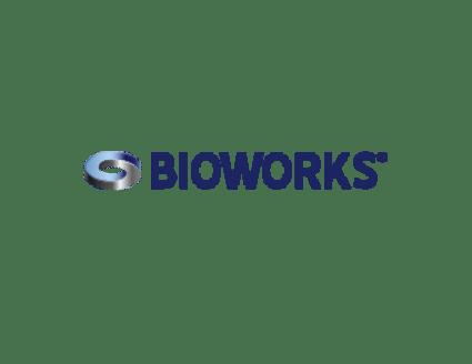 BIOWORKS® Verfahrenstechnik GmbH
